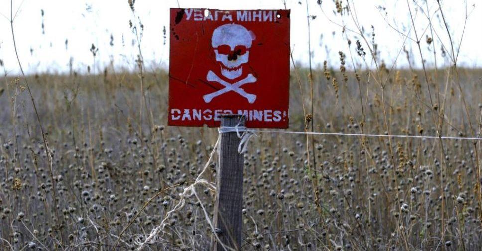 Госдеп США считает, что наразминирование Донбасса уйдут десятилетия